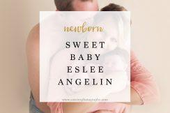 ashburn ga photographer newborn fall studio session